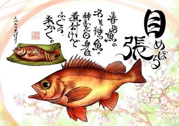 サケトモ-メバルmini.jpg
