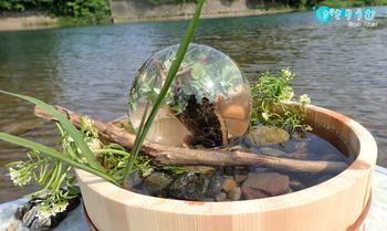 水盆と滴.jpg